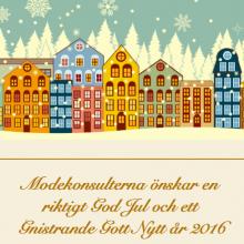 Till alla som ska ut i julhandeln….
